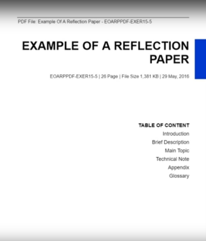 Reflection Paper Example View Sample